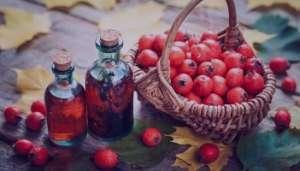 زالزالک در طب سنتی , خواص زالزالک در طب سنتی , خاصیت زالزالک در طب سنتی , فواید زالزالک در طب سنتی