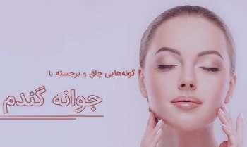 جوانه گندم و پوست صورت , خواص جوانه گندم و پوست صورت , مصرف جوانه گندم و پوست صورت , ماسک جوانه گندم و پوست صورت