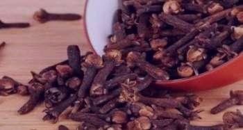 میخک در طب سنتی , خواص میخک در طب سنتی , خاصیت میخک در طب سنتی , خواص میخک