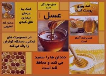 جوز هندی و عسل , خواص جوز هندی و عسل , خواص جوز هندی و عسل برای پوست