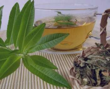 به لیمو و چای سبز , دمنوش به لیمو و چای سبز , ترکیب به لیمو و چای سبز