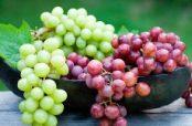 تاثیر مصرف انگور در سرماخوردگی به همراه خواص این میوه