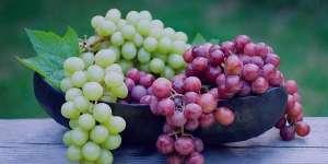 انگور در سرماخوردگی ، خوردن انگور در سرماخوردگی ، مصرف انگور در سرماخوردگی