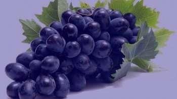 خوردن انگور سیاه در بارداری , خوردن انگور در بارداری , خواص انگور سیاه در بارداری