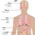 ایدز چیست و تمام راه های انتقال آن از طریق دهان