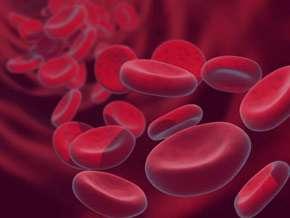 سویا, گیاهخواری, درمان کم خونی, عوارض کم خونی