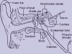 علائم و درمان پارگی پرده گوش