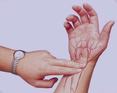 سرطان تخمدان, دستگاه گوارشی