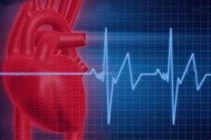 بیماری قلبی,پیشگیری از بیماری قلبی,قلب