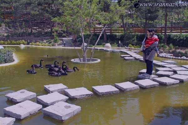 باغ پرندگان تهران، باغ پرندگان آدرس و نشانی و تلفن