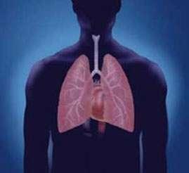بیماریهای ریه, آمبولی ریه
