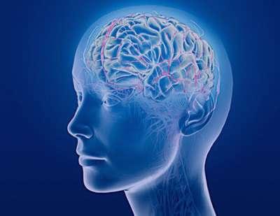 تحلیل مغز, بیماری کروتزفلد جاکوب