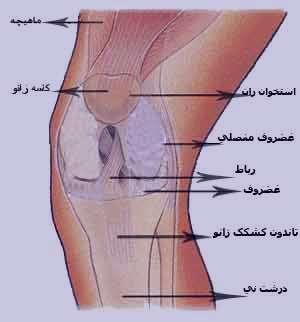 درمان درد مفصلها, تورم مفصل, بیماریهای التهابی