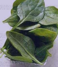 گیاهی برای درمان کم خونی و موثر در لاغری