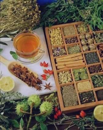 گیاهان دارویی مناسب برای زنان