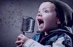 سن بلوغ پسران, هورمون تستوسترون, تارهای صوتی