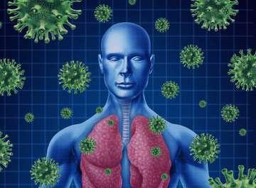 سیستم ایمنی بدن, ضعف سیستم ایمنی بدن, علت ضعیف شدن سیستم ایمنی بدن