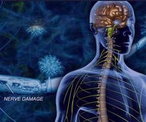 درمان بیماری, سیستم ایمنی بدن