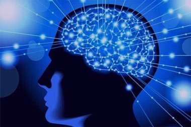 مغز,عوامل موثر در کاهش قدرت مغز,تقویت مغز