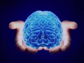 مغز, تقویت مغز, عوامل موثر در کاهش قدرت مغز