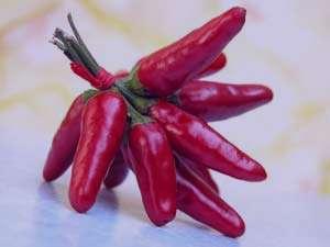 تقویت میل جنسی با گیاهان دارویی