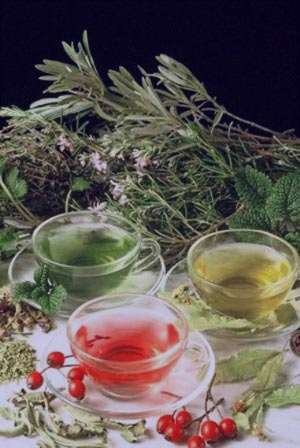 درمان چرک و عفونت گلو با داروهای گیاهی