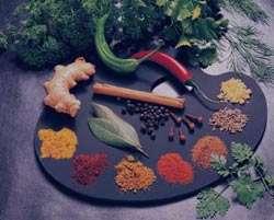 درمان بیماری های مختلف با گیاهان دارویی
