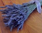 خواص درمانی گیاهان معطر