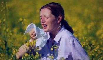 علائم سرماخوردگی, علائم تب یونجه, آبریزش بینی