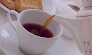 همه چیز درباره انواع چای های گیاهی
