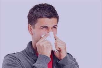 حساسیت فصلی , آلرژیک