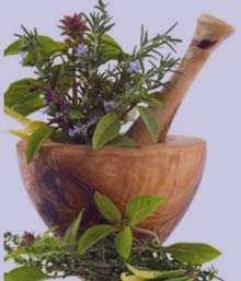 گیاهان دارویی برای حساسیت فصلی
