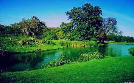 طبیعت,عکس طبیعت,عکس های زیبا از طبیعت,دانلود عکس طبیعت
