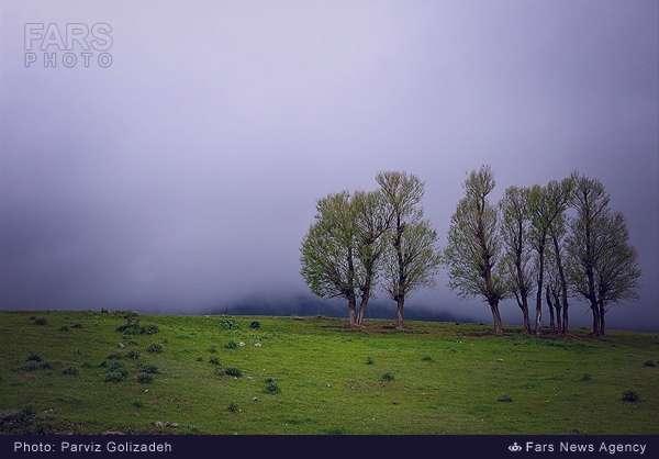 طبیعت ارسباران- آذربایجان شرقی (عکس)
