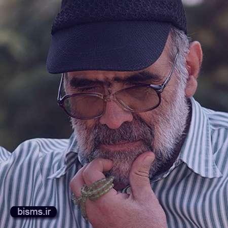 اصغر نقی زاده,عکس اصغر نقی زاده,همسر اصغر نقی زاده,اینستاگرام اصغر نقی زاده,فیسبوک اصغر نقی زاده