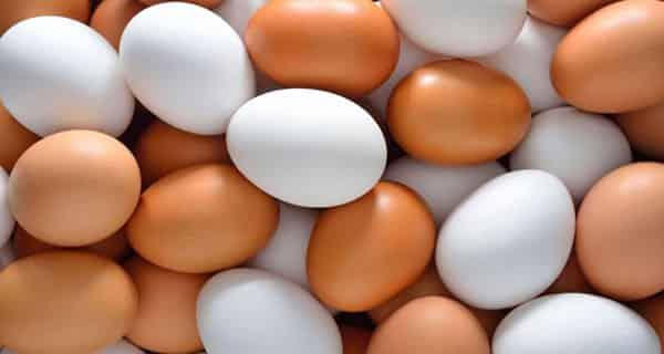 تعبیر خواب تخم مرغ