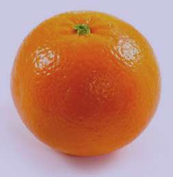 تعبیر خواب پرتقال , پرتقال در خواب دیدن , تعبیرخواب پرتقال خوردن , تعبیر خواب پرتقال خونی