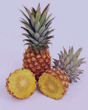 آناناس , خواص آناناس , مضرات آناناس , فواید آناناس