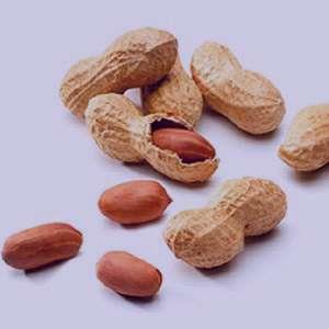 بادام زمینی , خواص بادام زمینی , بادام زمینی در بارداری , بادام زمینی و دیابت