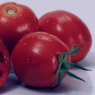 گوجهفرنگی , خواص گوجهفرنگی , گوجهفرنگی در بارداری , تاثیر گوجه فرنگی بر جنین