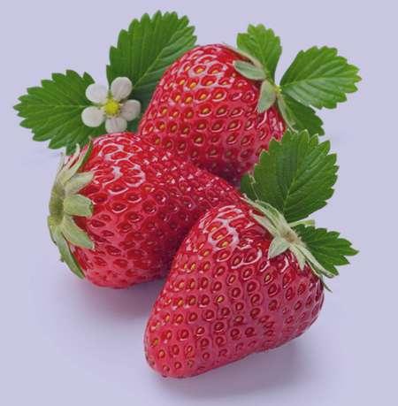 توت فرنگی , خواص توت فرنگی , خواص توت فرنگی برای کودکان , خواص توت فرنگی در بارداری