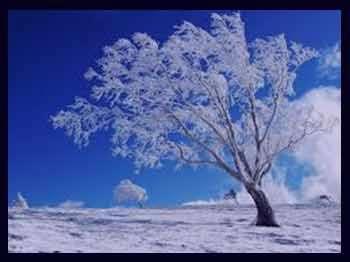 تعبیر خواب برف , برف در خواب دیدن , تعبیرخواب برف باریدن , تعبیرخواب برف بازی