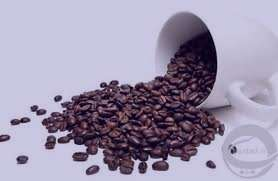 مضرات قهوه , قهوه , خواص قهوه , فواید قهوه