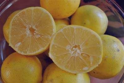 لیمو شیرین و دیابت , لیمو شیرین , خواص لیمو شیرین , فواید لیمو شیرین