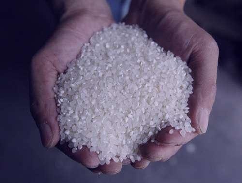 تعبیر خواب برنج , تعبیرخواب برنج خیس خورده , برنج در خواب دیدن , تعبیرخواب برنج خوردن