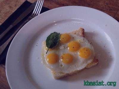 خواص تخم بلدرچین , تخم بلدرچین , فواید تخم بلدرجین , خواص بلدرچین در بارداری