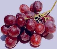 انگور , خواص انگور , فواید انگور , مضرات انگور