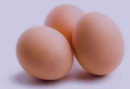 تخم مرغ , خواص تخم مرغ , مضرات تخم مرغ , فواید تخم مرغ