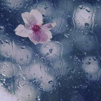 تعبیر خواب باران , تعبیرخواب باران , باران در خواب دیدن , jufdv o,hf fhvhk