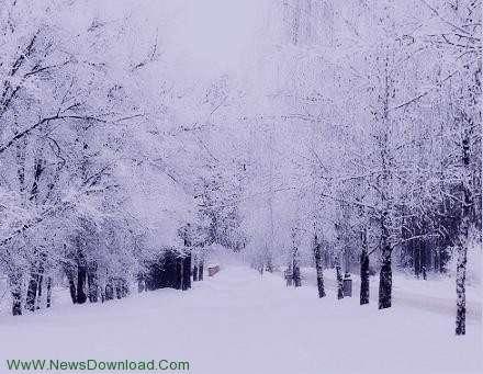 تعبیر خواب راه رفتن در برف , تعبیر خواب برف , برف در خواب دیدن , تعبیر خواب برف در پاییز